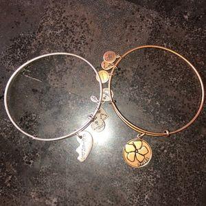 Alex and Ani (+) ENERGY bracelets